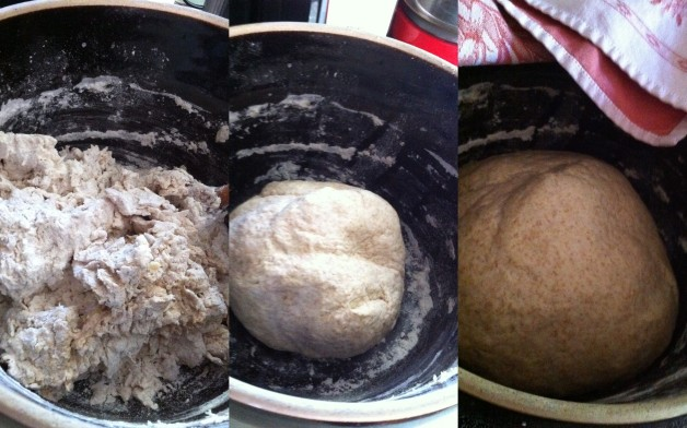 dough: before kneading, after kneading, after rising