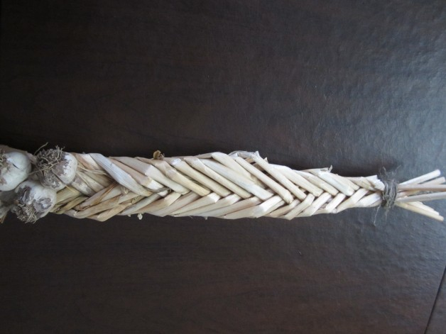A hard-necked garlic braid in a herring bone pattern.  The scapes, not the leaves, are used to make the braid.
