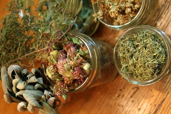 16-herbs