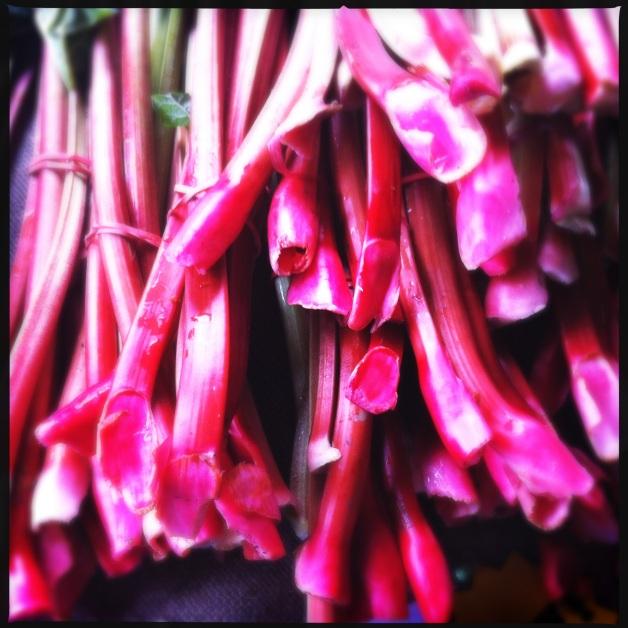 Kilpatrick Family Farm Rhubarb
