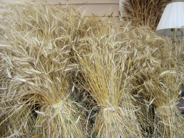 Sheaves of wheat on the front porch