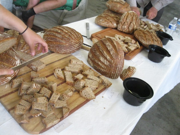 In honor of World Bread Day, here is Randy George's bread made from Vermont wheats.